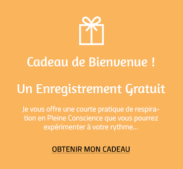 image cadeau orange